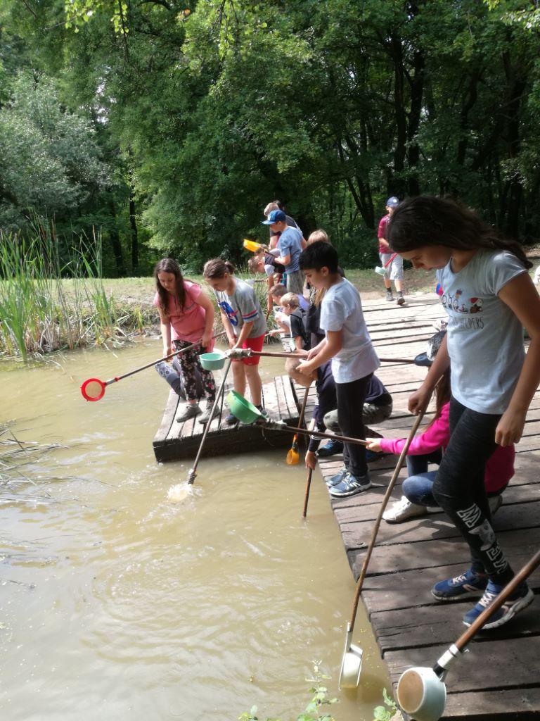 Erdei iskola Visegrádon